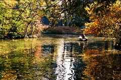 Pen-FT 2nd roll (mkk707) Tags: camera autumn vintage herbst arboretum olympus filmcamera herbstlaub penft zuiko38f18