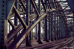 Hohenzollern Bridge / Hohenzollernbrcke (Steffen Schobel) Tags: bridge architecture vintage tracks cologne trains kln brcke gleise zge hohenzollernbrcke hohenzollernbridge architekur brckenkonstruktion