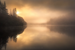 The Sermon (GenerationX) Tags: trees mist water silhouette fog sunrise reflections landscape dawn mirror scotland shadows cross unitedkingdom ducks scottish neil calm gb marker trossachs barr gloaming aberfoyle lochard nohorizon kinlochard lochardforest canon6d