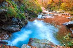 Red symphony 🍁🍂 (Doomguy Photos) Tags: autumn italy nature waterfall leaf nikon vertova