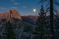 Super Moon over Yosemite (Darvin Atkeson) Tags: california yosemite national park halfdome elcapitan bridalveil forest sierra nevada mountains clouds rest valley canyon glacier darv darvin lynneal atkeson yosemitelandscapescom supermoon super moon explore