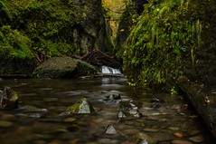 Entrance to Oneonta (M3tr1c) Tags: falls waterfall river creek wet flow rush rock moss rocks logs trees waterfalls forest columbia gorge wa oregon oneonta canyon wall cliffs