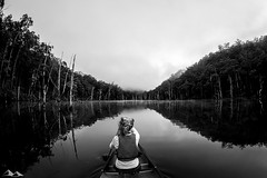 Glass (ChrisEyreWalker) Tags: travel camping chris trees lake storm tree water photography kayak australia roadtrip olympus stump nsw omd kangaroovalley em1 kanoe eyrewalker surflove wwwchriseyrewalkercom chriseyrewalker