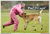 First Von King Von Backdraft RINALDI V  -0946 (Fab Photos Canine et Sportive) Tags: king von first backdraft