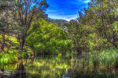 River Runs Through It (Kevin, (Away 21 Oct / 9 Nov) Traveling) Tags: trees sky panorama lake water canon dam widescreen australia nsw fields 1855mm hdr lakestclair hunterregion kevinwalker glenniescreekdam canon1100d