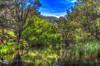 River Runs Through It (Kev Walker ¦ 8 Million Views..Thank You) Tags: trees sky panorama lake water canon dam widescreen australia nsw fields 1855mm hdr lakestclair hunterregion kevinwalker glenniescreekdam canon1100d