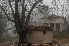 Rainy day, Parnitha, Greece 3 (nikhrist) Tags: trees abandoned rain fog nick greece parnitha attiki christodoulou