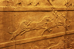 Assyrian Lion Hunt : Lion Hunt on Horseback (praja38) Tags: life city uk england london art history wall museum carved king panel britain live caps lion corridor culture royal humour carving historic arrows british artifact rider horseback nineveh hunt mane spear capricorn assyrian ashurbanipal northpalace