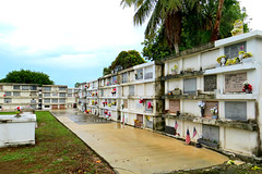 Key West (Florida) Trip 2015 0007Ri 7064Ri 4x6 (edgarandron - Busy!) Tags: cemeteries cemetery keys florida keywest crypt floridakeys crypts