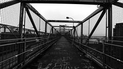 Williamsburg (carolynrea) Tags: newyorkcity bridge blackandwhite streetart eastvillage newyork manhattan lowereastside streetphotography bnw williamsburgbridge bridgephotography buildingphotography streetartphotography