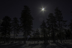 Laponie (Maxime's pictures) Tags: winter moon snow tree night lune finland landscape hiver lapland kuusamo neige paysage nuit arbre ruka finlande laponie rukasalonki