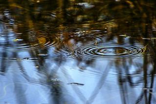 Water-Music (explored)