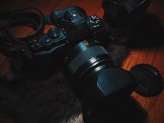 Olympus EM5, Pana LEICA 25MM F1.4, and Panasonic 14-45mm. (DanLopez.) Tags: fl600r ttl em1 em5 pl25 olympus panasonic cameraporn camera still 2ommf17
