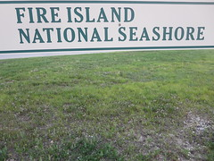 IMG_7344 (RYANISLAND) Tags: fireisland fireislandny fireislandnewyork fi fire island fins fireislandnationalseashore nationalseashore national seashore beach beaches theatlanticocean atlanticocean atlantic ocean summer summertime fireislandnps nps nationalpark nationalparkservice smithpoint smithpointpark smithpointbeach ny newyork us usa barrierbeach iloveny ilovenewyork 2015