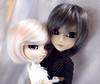 Richard & Kokoro (Munchi-chan) Tags: pullip taeyang groove doll 16 gyro