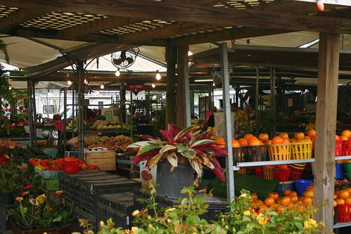 ProduceMarket-PlantCity