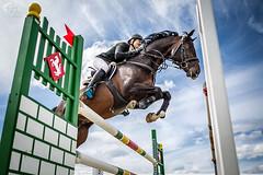 2363 ([]NEEL[]) Tags: horse concours hippique kharkiv ukraine white stable whitestable