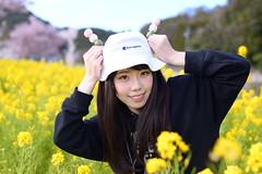 DSC_4275 (gabusuki) Tags: