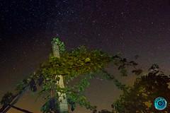 IMG_5931 (billyE1973) Tags: nacht sterne milchstrase langenlois