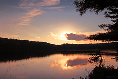 Sunset Silhouette - Lac Alphonse, La Mauricie National Park ( Qubec, Canada) (Andrea Moscato) Tags: andreamoscato canada america view vista vivid sunset sun tramonto clouds nuvole sky cielo trees albero silhouette blue yellow black shadow light lago lake landscape water acqua freshwater reflection paesaggio parco park nature natura natural naturale national np nationalpark evening sera