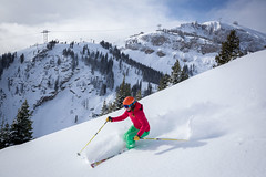 Ski-Powder-03 (SNOW OPERADORA) Tags: lifts powder ski tram winter winter1516