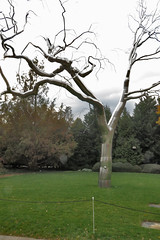 National Gallery of Art Sculpture Garden in Washington DC 15 111916 (evimeyer) Tags: nationalgalleryofart sculpturegarden washingtondc