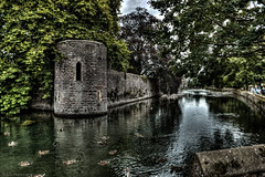 Old Palace Moat (Anthony Plancherel) Tags: architecture category england external places somerset travel wells architecturephotography historic palace ruin derelict decay ruins water watercourse birds ducks wildfoul path wall castle stone stonebuilding window hdr sky greysky trees canon1585mm canon70d canon travelphotography ripples reflectedlight reflections outdoor