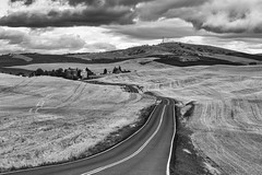 In the Distance (dshoning) Tags: palouse farming rural country washington road town silos elevator