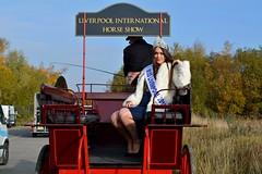 Ms Louella Walker (napoleon666uk) Tags: liverpool international horse festival liverpoolinternationalhorsefestival horseshow echoarena animal parade louellawalker