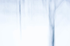 Der erste Schnee II (DSC09719) (tewsnic) Tags: tree abstract firstsnow icm blurr longexposure winter stockholm schnee baum
