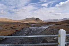 MAQ_0451 (MolviDSLR) Tags: deosair national park skardu gilgit baltistan northern areas pakistan brown bear wild life scenery landscape