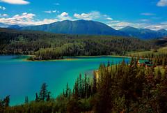Canada: Yukon: Emerald Lake (mariofalcetti) Tags: canada yukon emeraldlake lake lago water acqua landscape paesaggio tree alberi ruby3