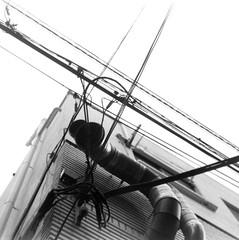 (nerves) (Dinasty_Oomae) Tags: bolsey  bolseyb2 b2  blackandwhite bw monochrome outdoor  tokyo  koutoku  duct  utilitywire