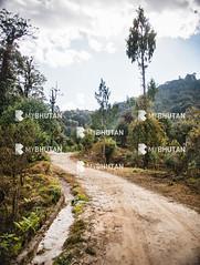 Lamperi Botanical Garden (mybhutanllc) Tags: bhutan sightseeing landmark attractions dochula localpark