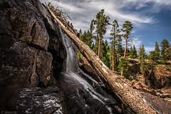 Glen Alpine Falls (N_Webster15) Tags: california longexposure trees lake nature water rock canon landscape waterfall log rocks angle wide tahoe wideangle laketahoe fallenleaflake glenalpinefalls