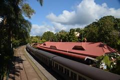 Train vers la forêt tropicale