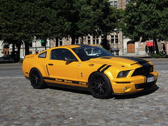 Very nice Mustang Super Snake (anyett) Tags: shelby mustang gt1000 subersnake