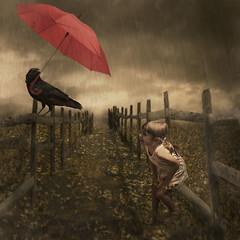 it's starting to rain (irina_escoffery) Tags: photoshop