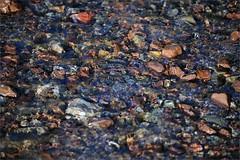 peace (me*voilà) Tags: water reflections flow rocks stream pebbles onblue cafiles