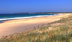 Sand dunes to Norah Head, NSW (sbartolillo) Tags: norahhead