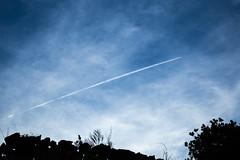 Flight road (Carmine.shot) Tags: flight jeju