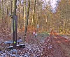 Eingang Nationalpark an der Mörschieder Burr (AndreasHerbert) Tags: mörschied mörschiederburr nationalparkhunsrückhochwald