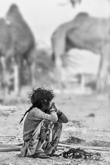 Lost childhoods . . . Pushkar-03251-20151121-PE7C1929-Edit-2 (Swaranjeet) Tags: sjs swaran swaranjeet swaranjeetsingh sjsvision sjsphotography swaranjeetphotography 2015 india hindustan bharatvarsh indie canon fullframe 5dmkiii eos5dmkiii dslr eos canoneos5dmkiii full frame canonef70200f28lisiiusm ef 70200 f28 is pushkar rajasthan mela camel horses camelfair ethnic marwari tradition traditional portraits turban moustache colourful colour november portrait female life people indian animalfair rajasthani eos5diii