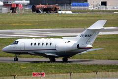 EI-WXP (GH@BHD) Tags: corporate aircraft aviation raytheon bae executive hawker bizjet britishaerospace bae125 bhd belfastcityairport airlink hawker800xp airlinkairways eiwxp