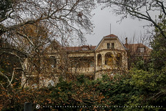 Tatoi, Parnitha, Greece 4 (nikhrist) Tags: house abandoned forest nick greece parnitha attiki christodoulou