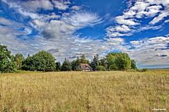 Ein Haus das die Weite der Landschaft in sich aufnimmt und dabei fast verschwindet (garzer06) Tags: himmel wolken wolkenhimmel blau weis grn gras haus baum naturephotography deutschland mecklenburgvorpommern inselrgen vorpommernrgen vorpommern insel rgen landschaftsbild landschaftsfotografie landscapephoto landscapephotography naturfoto landschftsfoto