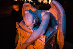 I'm Counting the Days (Thomas Hawk) Tags: america bayarea california colma cypresslawn cypresslawncemetery cypresslawnmemorialpark southbay usa unitedstates unitedstatesofamerica westcoast angel cemetery night sculpture fav10 fav25 fav50