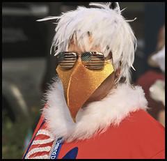 Dog Parade 2016 #1 (hamsiksa) Tags: parades smalltowns homemadeparade dogs clowns costumes mardigras fattuesday deland florida