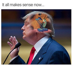 Guys, We Figured Out What's Going on With Trump (werecommend) Tags: donaldtrump plankton politics