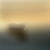 adrift (jd weiss) Tags: hasselblad500cm zeissplanar8028 ektar100